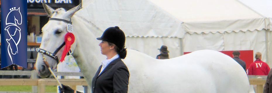 Suffolk Horse Show 2013